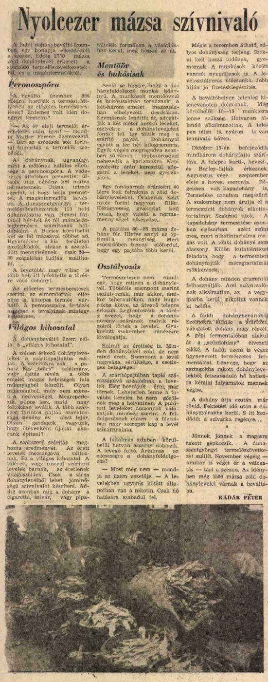 1972.08.09. 8000 mázsa szívnivaló