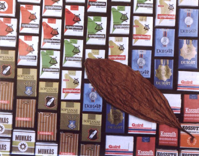 Sátoraljaújhelyi cigaretták