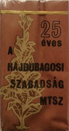 25 éves a Hajdubagosi Szabadság MTSZ