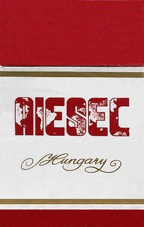 AIESEC 2.