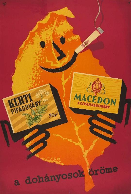 Kerti pipadohány és Macedon cigarettadohány