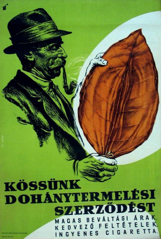 Dohánytermelési szerződés 06.